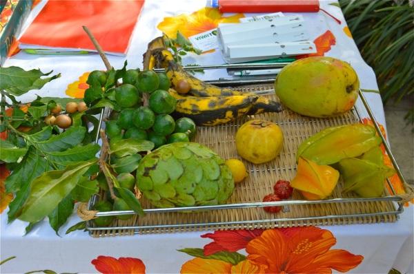 Frutti esotici di Sicilia di costagar51