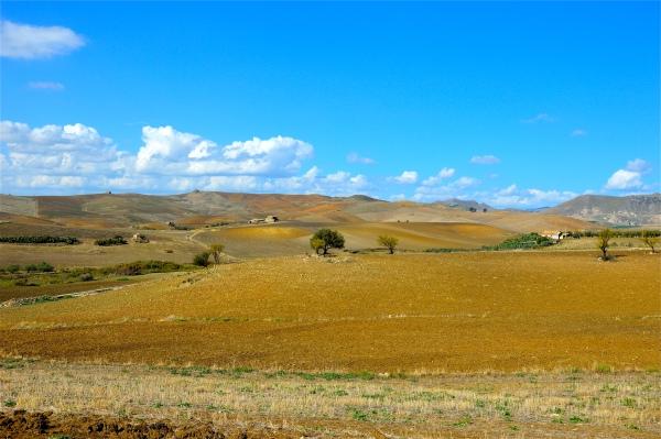 """""""Terre di Catenanuova"""" di costagar51"""