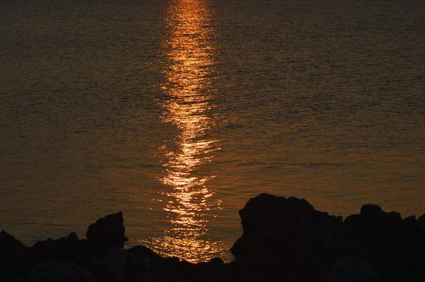 Riflessi in un mare d'oro di costagar51