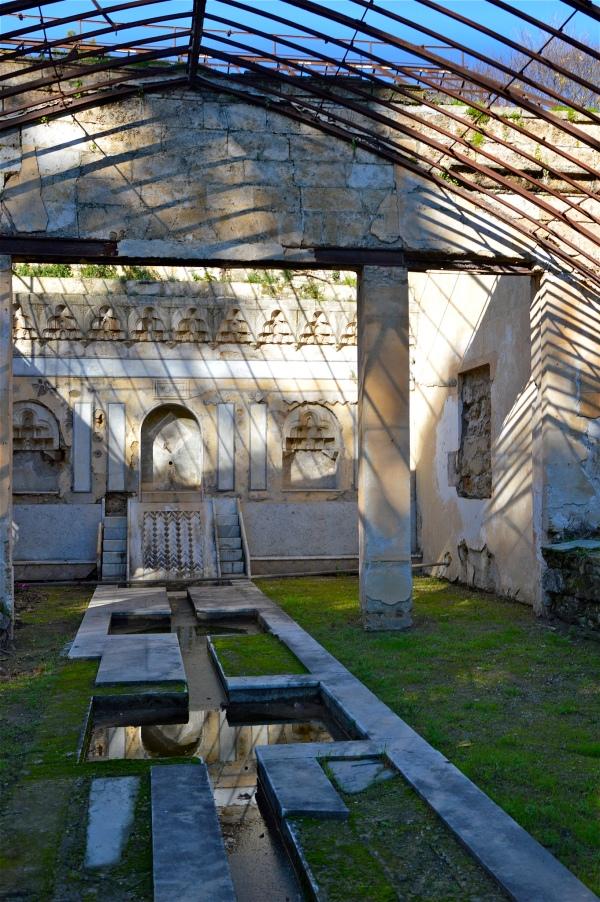 """Nella serra di """"Villa Sophia"""" di costagar51"""